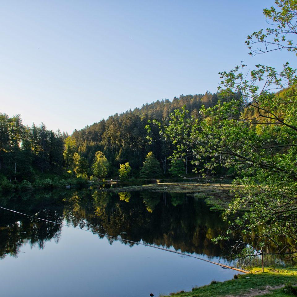 Seen & Gewässer