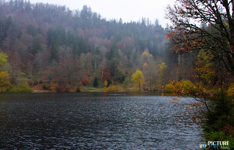 Graues Herbstwetter am Nonnenmattweiher